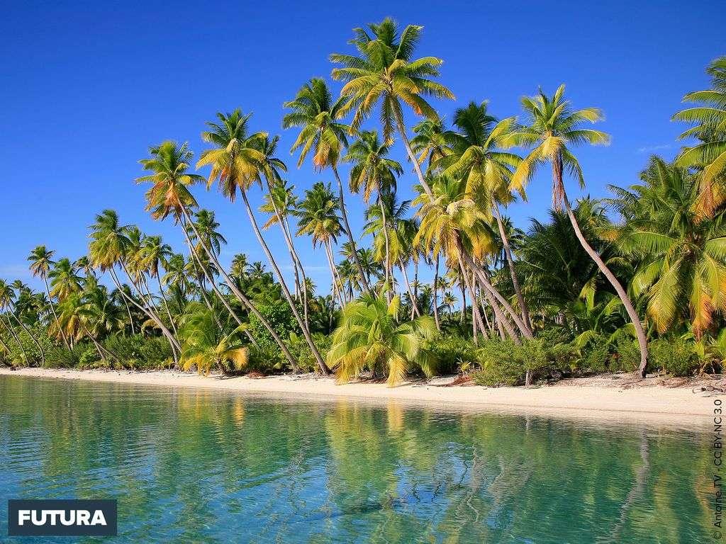 Fakarava réserve de biosphère - Tuamotu