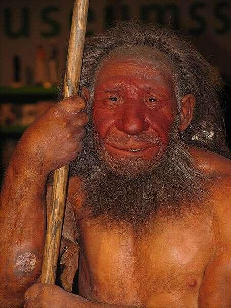L'Homme de Néandertal serait apparu il y a 250.000 ans environ et vivait principalement en Europe et en Asie occidentale, jusqu'au Moyen-Orient. Il doit son nom à la vallée allemande dans laquelle le premier spécimen considéré comme tel a été découvert, en 1856. © Stefan Scheer, Wikipédia, cc by sa 3.0
