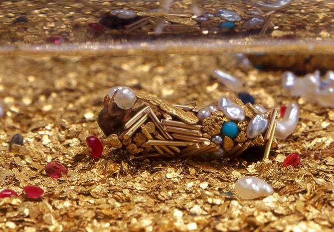 Phrygane sur lit d'or et de pierres précieuses en train de construire son fourreau. © Fabrice Gousset