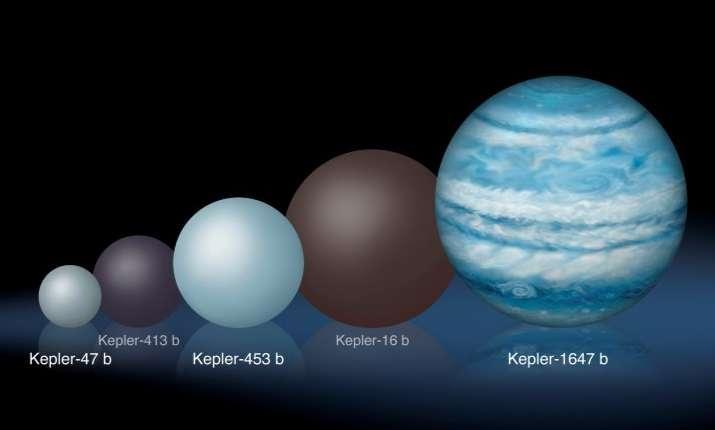 Comparaison de Kepler-1647b avec d'autres exoplanètes circumbinaires connues. Au minimum aussi grande que notre Jupiter, la planète est à ce jour la plus grosse et la plus massive découverte en orbite autour de deux étoiles. © Lynette Cook
