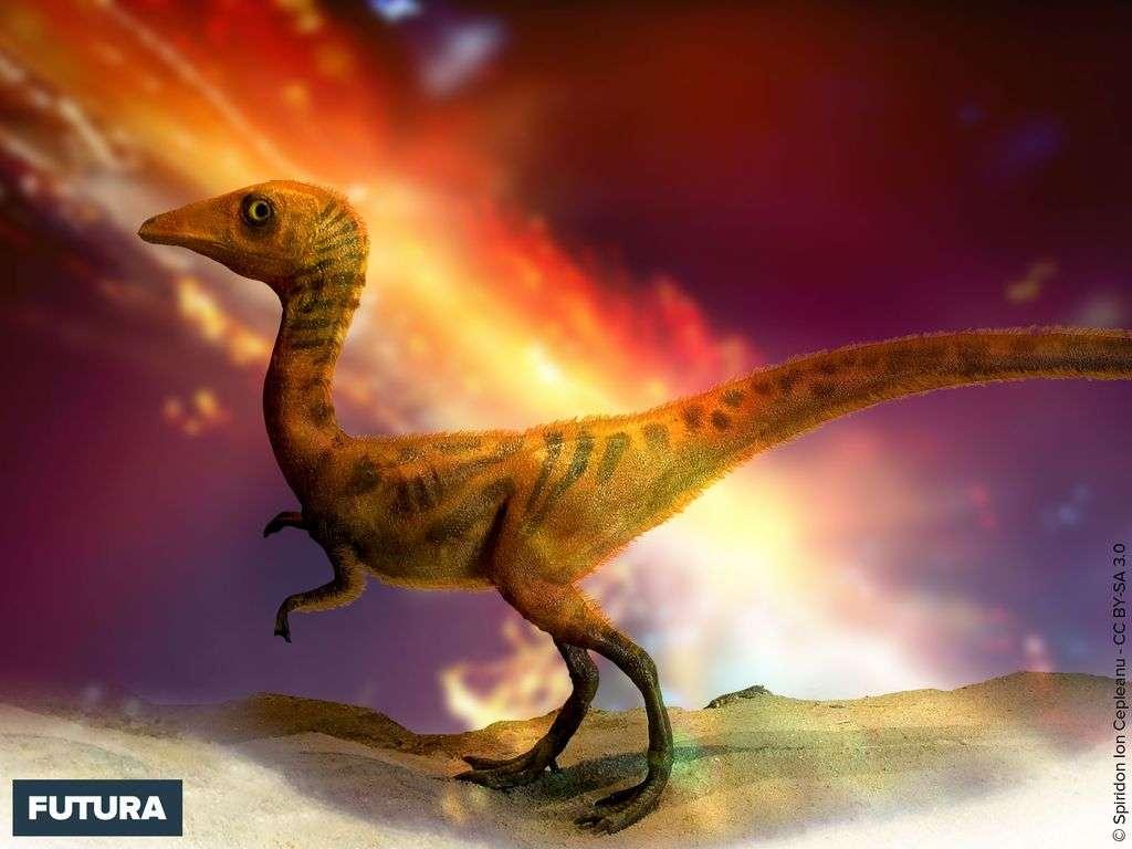 Dinosaure Compsognathus