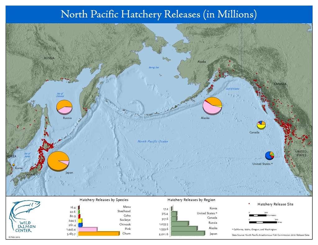 Les lâchers de saumons d'élevage réalisés en 2010 dans l'océan Pacifique. Les points rouges correspondent aux lieux de libérations. Les couleurs se réfèrent à des espèces précises présentées dans le graphique du bas (à gauche), qui présente le nombre d'individus libérés par espèce (en millions). Le diagramme de droite indique le nombre de poissons libérés par pays pour l'Alaska, le Canada, la Corée, les États-Unis, le Japon et la Russie (en millions). © Wild Saumon Center