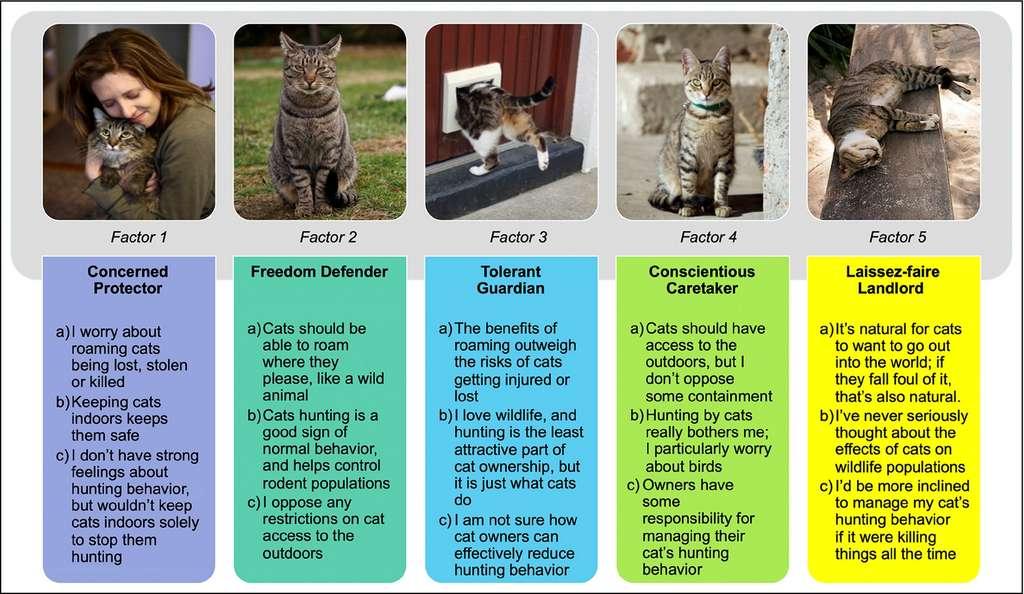 Voici les cinq différents profils, illustrés par trois déclarations ou sentiments associés. © Crowley et al. 2020, Frontiers in Ecology and the Environnement