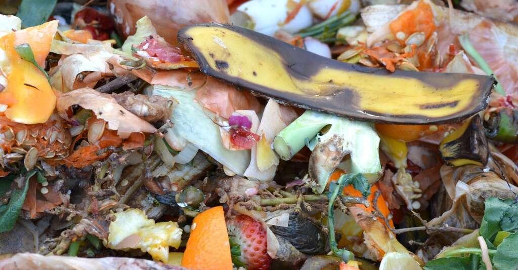 En moyenne, trois kilogrammes de déchets organiques produisent un kilogramme de compost. © Ben_Kerckx, Pixabay, CC0 Creative Commons