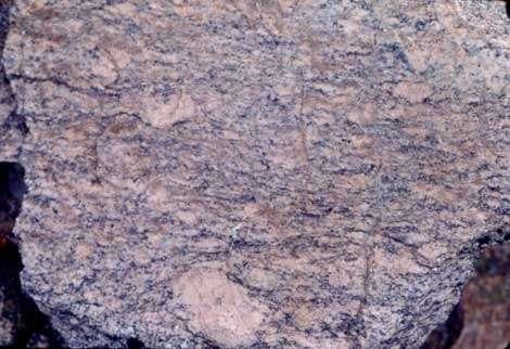 Type de gneiss leptynique. (Chirat de Combernaud.)