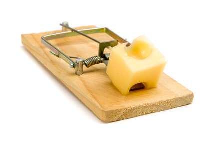 La tapette à souris ou à rat est une solution pour se débarrasser des rongeurs. © Agb