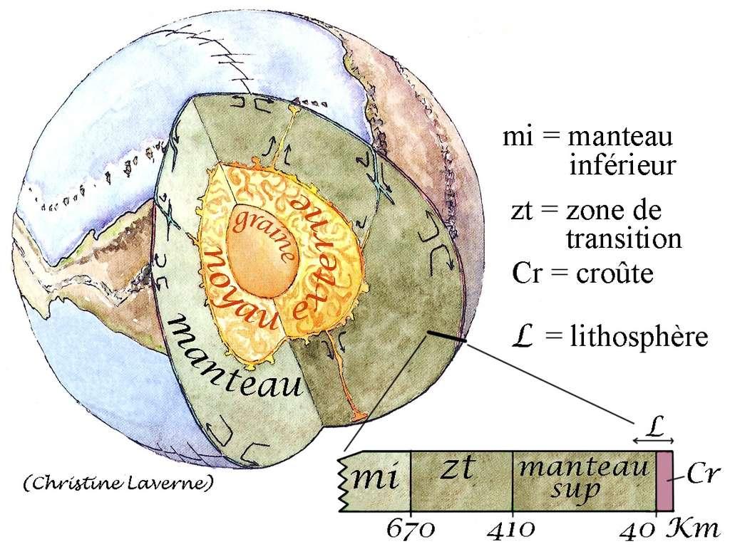 Ci-dessus, une représentation de la structure sismique du globe terrestre. © Modifié par Jacques Kornprobst et Christine Laverne, BRGM et G&B édition, 2002