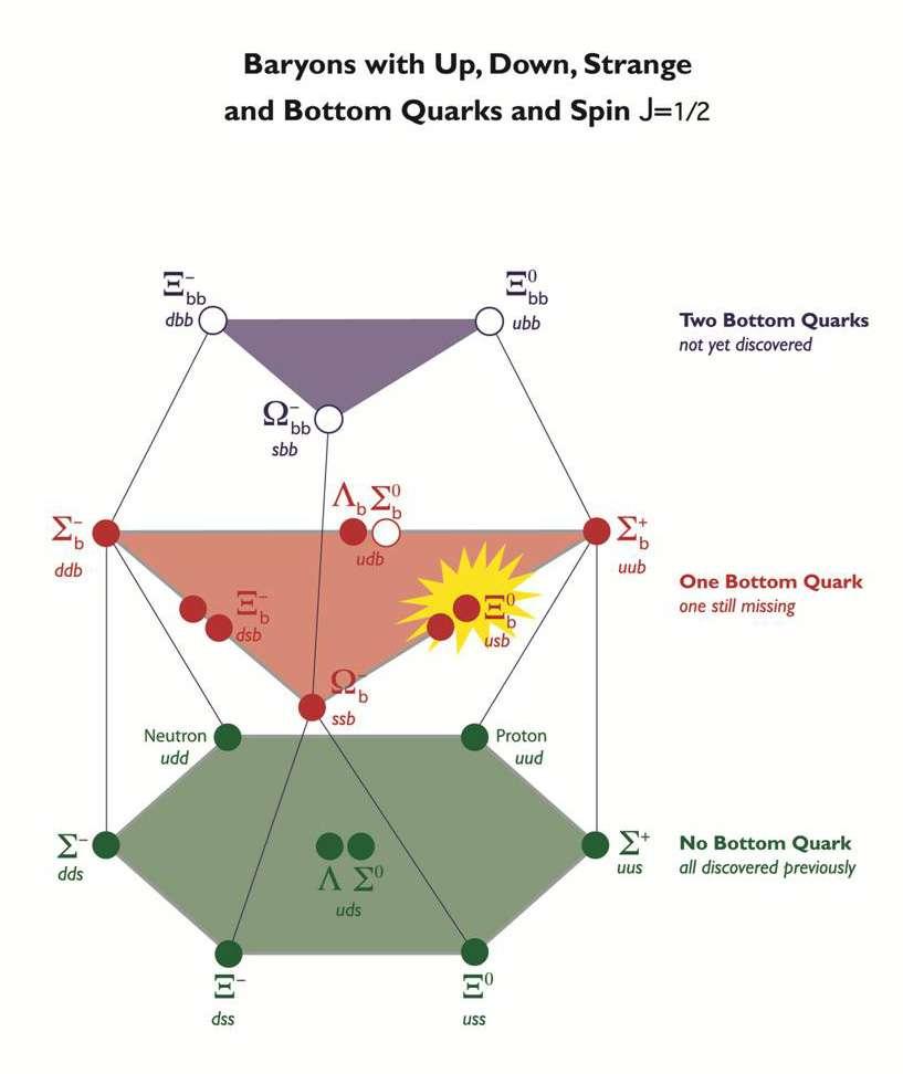 Un schéma montrant des combinaisons à trois quarks. Les baryons avec deux quarks b (dans la partie violette) manquent toujours à l'appel. Le Xi neutre avec quarks u, s et b a finalement été détecté. Tous les baryons laissés en cercles blancs sont ceux qui n'ont pas été découverts. © Fermilab
