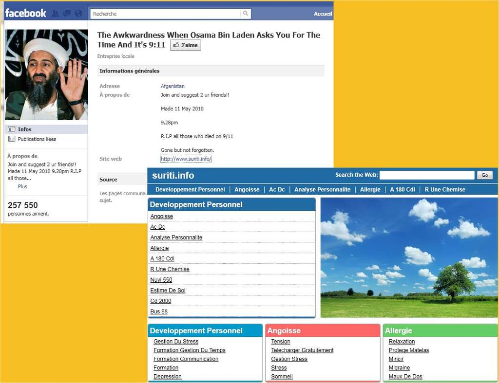 Sur Facebook, une recherche sur la mort de Ben Laden peut conduire à des sites variés, par exemple à but commercial, comme ici. © Futura-Sciences