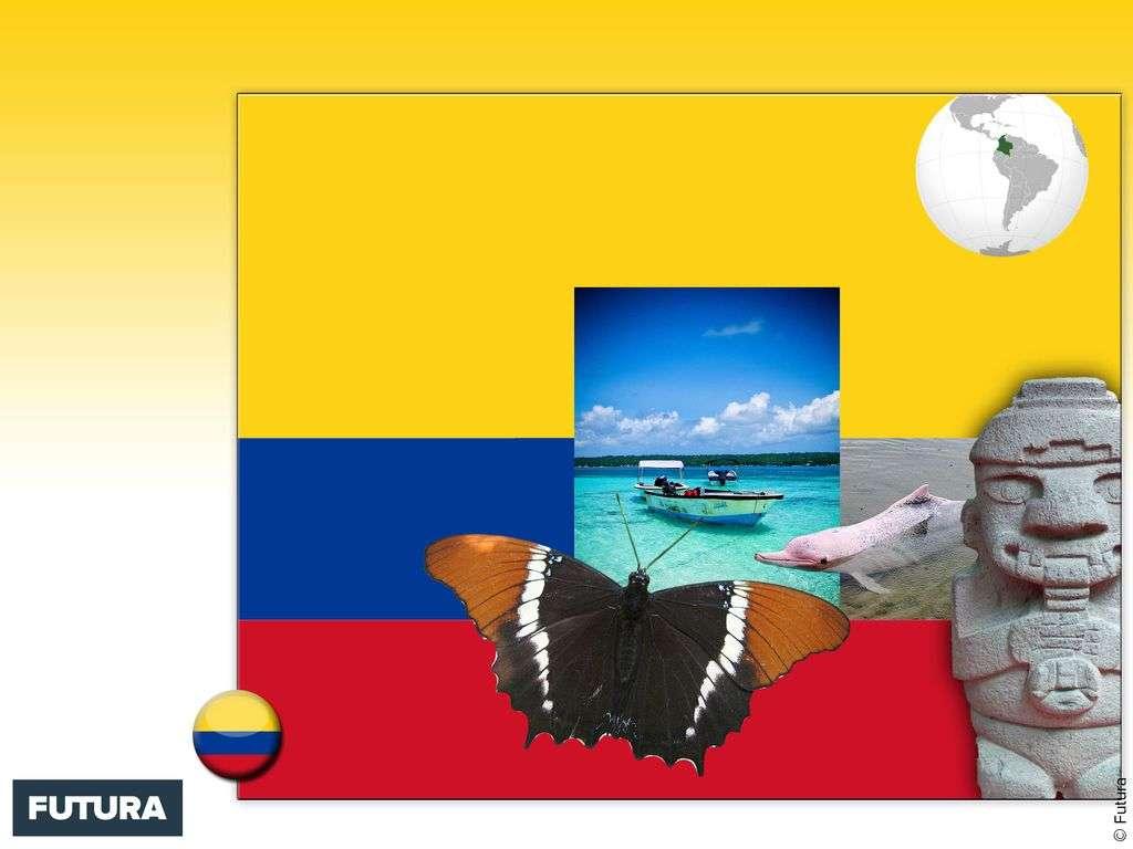 Drapeau : Colombie