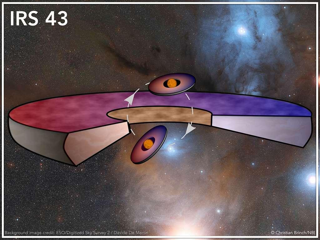 Ce schéma montre deux petits disques protoplanétaires autour de deux jeunes étoiles, donc circumstellaires, et un grand disque circumbinaire. Les deux étoiles formant le système binaire se déplacent dans un plan orbital indiqué par les flèches et la courbe en tirets. La matière dans les disques est en rotation de sorte que la lumière est décalée vers le rouge si elle s'éloigne d'un observateur et vers le bleu dans le cas contraire. Ceci explique le choix des couleurs pour les disques. © Christian Brinch, NBI, KU