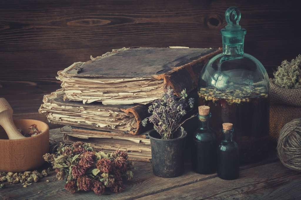 Le chanvre est utilisé en médecine depuis des millénaires. © chamillew, Adobe Stock
