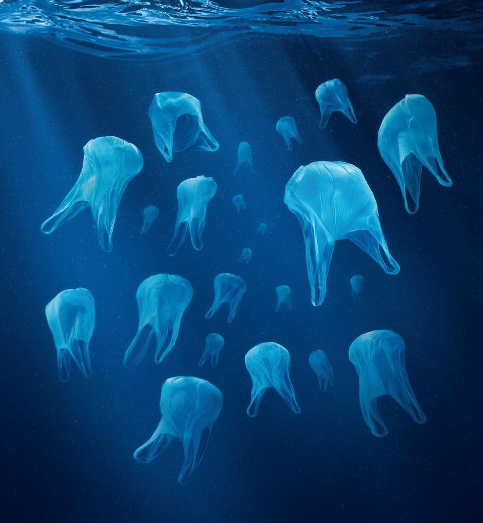 Ces méduses sont en plastique et peuvent être ingérées par des animaux qui font la confusion entre les deux, comme nous le rappelait l'association Surf Rider avec cette image. La vitesse de fragmentation et le destin océanique de cette matière plastique restent encore très mal connu. © Surfrider
