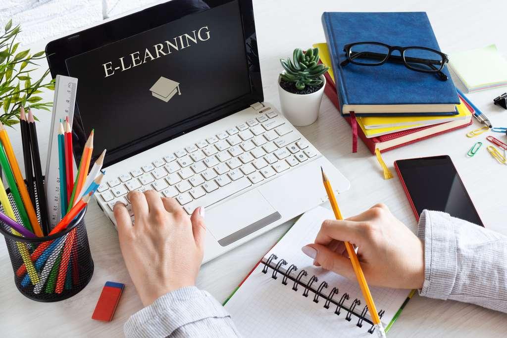Le e-learning, une méthode de formation à distance aux nombreux avantages. © Dodor_Inna, Adobe Stock