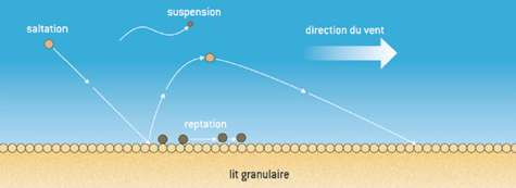 Fig. 1. Différents mécanismes de transport des grains par le vent au-dessus d'un lit de sable. © DR