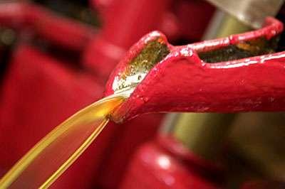 A froid, l'huile obtenue est le jus naturel qui renferme tous les principes nutritifs essentiels © Toute reproduction et utilisation interdites