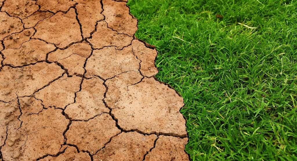 Limiter le réchauffement climatique, un enjeu mondial. © Tumisi, Pixabay, DP