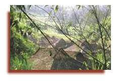 Les réserves de biosphère sont des lieux où les formes traditionnelles d'utilisation des terres et les valeurs culturelles qui leur sont associées peuvent être maintenues et renforcées. Les habitants de la Réserve de biosphère de Xishuangbanna dans le sud de la Chine appartiennent à plus de 16 groupes ethniques qui vivent là depuis des milliers d'années. Ci-dessus, une habitation traditionnelle Dai, dont les tuiles en bois se fondent harmonieusement dans le paysage. Concilier les modes de vie traditionnels et les demandes d'un pays qui se modernise constitue aujourd'hui un défi majeur. Photo : © Miguel Clüsener-Godt, UNESCO
