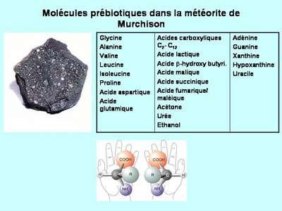 Les molécules retrouvées dans la météorite de Murchison. © DR