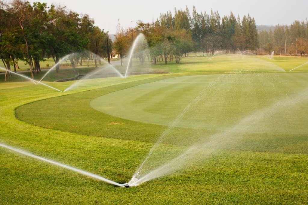 Agriculture, arrosage des espaces verts, les usages sont multiples. En France, 0,6 % des eaux usées traitées sont réutilisées. © Sura Nualpradid, Adobe Stock