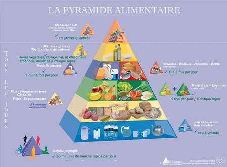 La pyramide alimentaire (cliquez sur l'image pour l'agrandir). © Diffu-Sciences