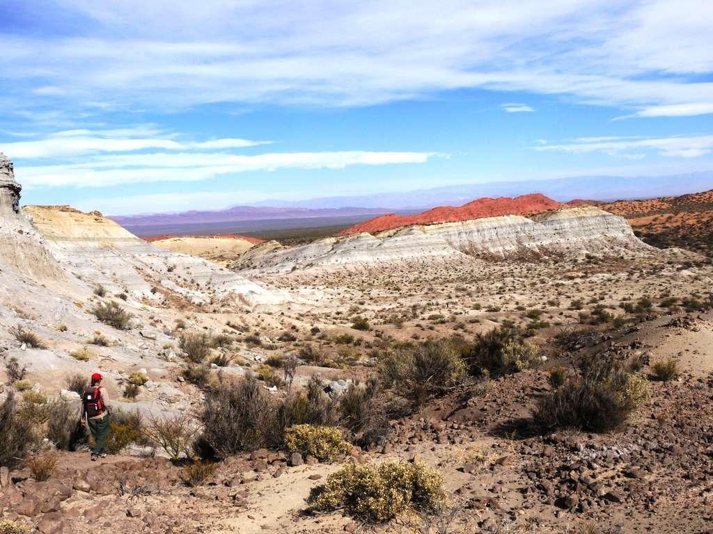 La paléontologue Adriana Mancuso (en bas à gauche) est ici en pleine exploration des badlands de la formation Chañares. En Argentine, ses affleurements sont situés dans le parc national Talampaya. © Randall Irmis