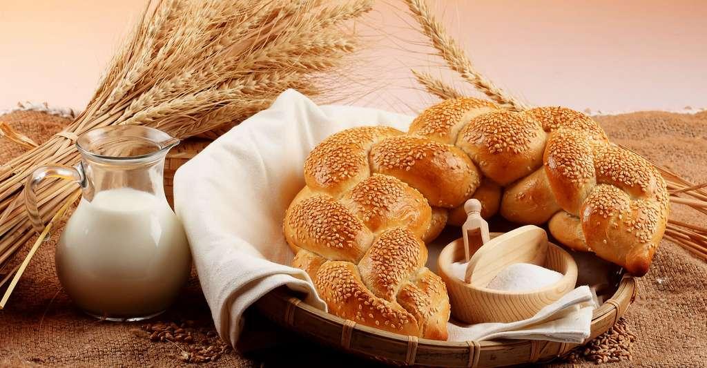 Brioche aux graines de sésame faite à partir de lait cru. © Michael Stern, CC by-sa 2.0