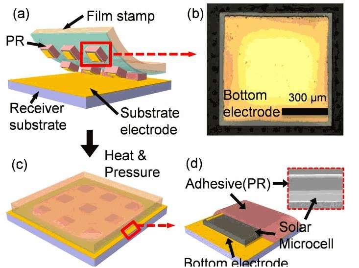 Ce schéma décrit la méthode de fabrication employée par les chercheurs du GIST pour obtenir des cellules photovoltaïques ultrafines. En (a), sont représentées les cellules fabriquées à partir d'arséniure de galium et qui sont déposées sur une électrode (substrate electrode, en anglais), elle-même superposée à un substrat polymère (receiver substrate). Ces cellules sont maintenues en place par un adhésif temporaire. L'ensemble est ensuite soudé à froid par pression et chauffage, en (c), puis l'adhésif est ensuite retiré, en (d). © Juho Kim, APL
