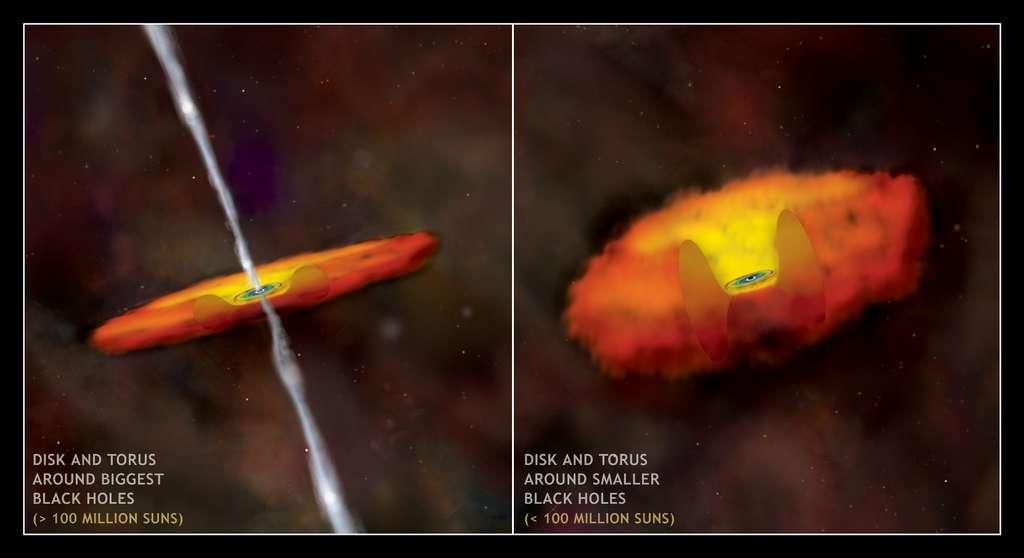 Sur ces deux schémas, on voit la double structure théorique du disque d'accrétion autour d'un trou noir supermassif en fonction de son contenu en masse. Les moins massifs posséderaient un tore épais de gaz et de poussière entourant un disque interne mince. © Nasa/CXC/M.Weiss