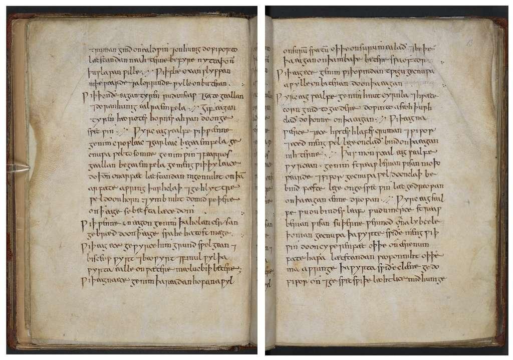 Le Leechbook de Bald est un des premiers ouvrages de médecine conçus : il date du IXe siècle. © British Library