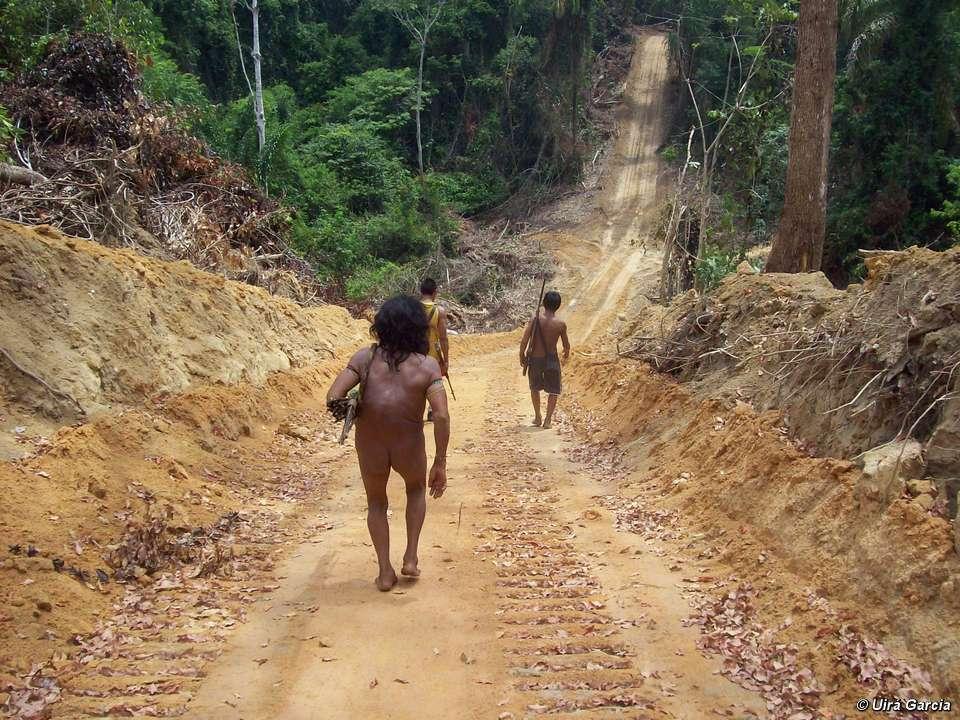 Un Awá descendant la route construite par les bûcherons. © Uirà Garcia