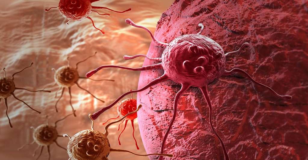 Le développement des biotechnologies médicales et de la médecine personnalisée pourrait notamment jouer un rôle essentiel dans le traitement des cancers. Ici, des cellules cancéreuses. © Jovan Vitanovski, Shutterstock