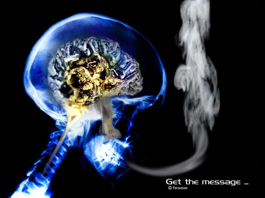 Voies respiratoires, système cardiovasculaire, système digestif mais aussi vessie ou col de l'utérus, le tabac ne se limite pas à causer des dommages sur ces organes. Il accélère aussi le déclin cognitif chez les hommes. Il est toujours temps d'arrêter de fumer ! © Parousium, parousium.blogspot, cc by nc nd 2.5