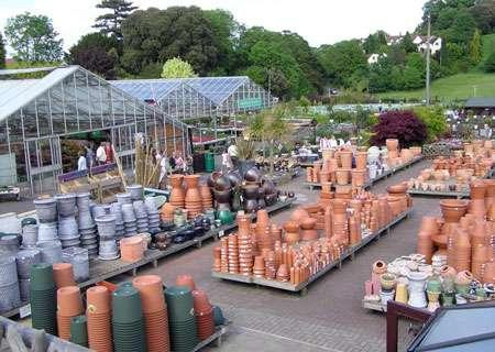 Nombreuses sont les variétés de jardinières. © Arpingstone, domaine public