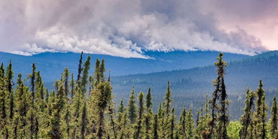Des chercheurs ont utilisé des données satellite pour retracer la saison des incendies en Alaska et dans le nord-ouest du Canada sur une période de 17 ans. © troutnut, Getty Images