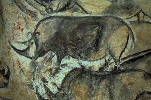 Fresque de la grotte Chauvet