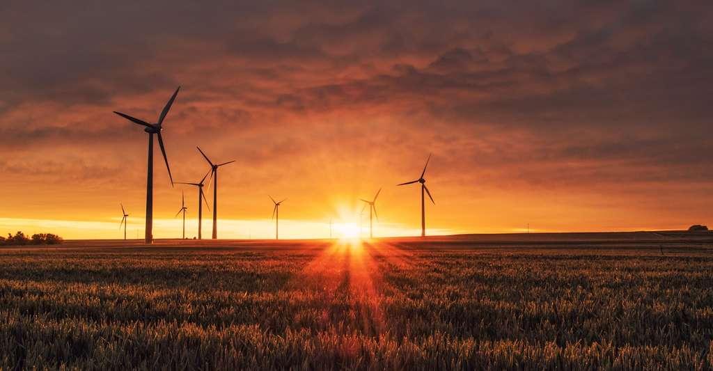 Les projets de compensation carbone peuvent porter sur l'installation de moyen de production d'énergie renouvelable. © Karsten Würth, Unsplash