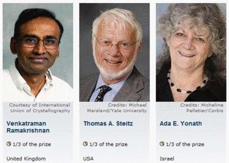 Cliquer sur l'image pour l'agrandir. Les trois lauréats du prix Nobel de chimie 2009 © Capture d'écran du site nobelprize.org