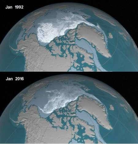 Dans les années 1980, 20 % de la glace qui constituait la banquise arctique avait plus d'un an, contre seulement 3 % aujourd'hui. Sur ces photos, plus la glace est ancienne, plus elle apparaît blanche. © Nasa's Goddard Space flight Center, Jefferson Beck