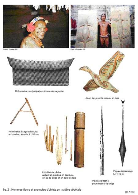 Hommes-Fleurs d'Indonésie et exemples d'objets en matière végétale. © Hubert Forestier, 2008, EchoGéo