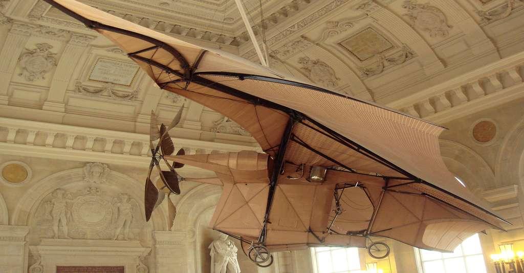 Avion inspiré des ailes de chauves-souris. © PHGCOM, CC by-sa 3.0