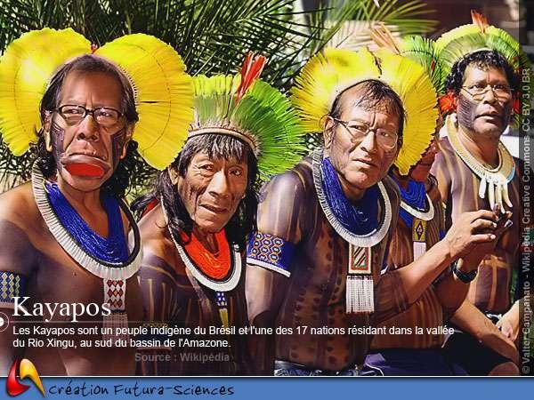 Découvrir les Kayapos