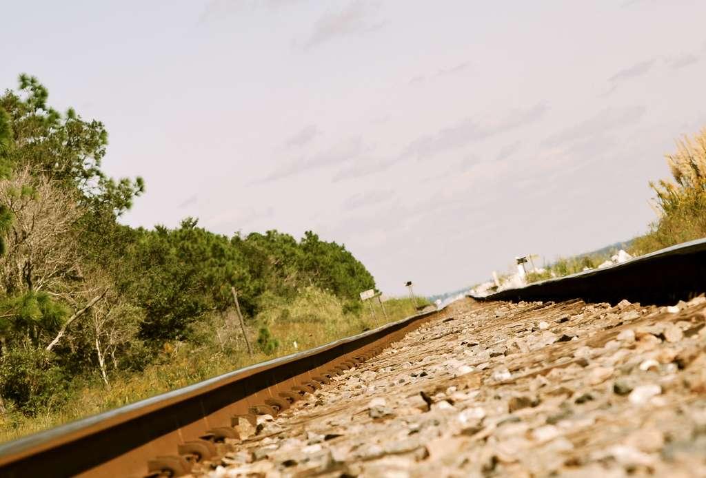Lors des fortes chaleurs, les rails se dilatent et les trains doivent circuler à vitesse réduite. © Tara R, Flickr CC BY-NC-ND 2.0