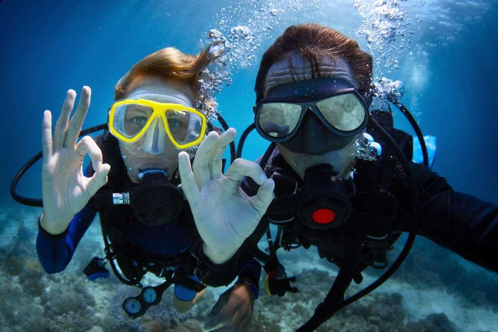 Contrairement à ces joyeux plongeurs, nous resterons bien confortablement à l'intérieur du Challenger Deep. © Dudarev Mikhail, Adobe Stock