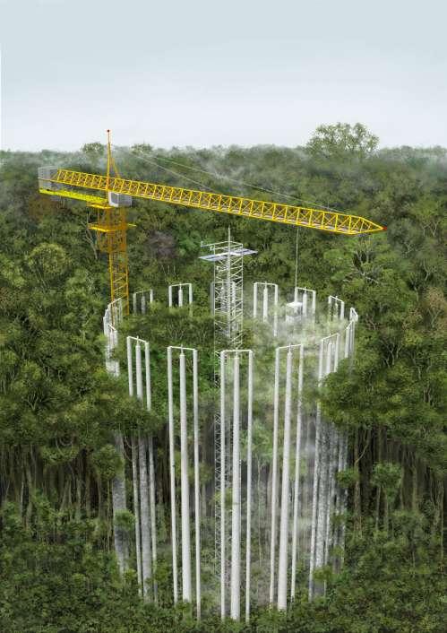 Un site expérimental AmazonFACE qui reproduit une forte concentration de CO2 en Amazonie. © AmazonFACE