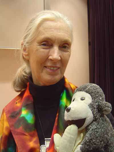 La primatologue Jane Goodall. Crédit Commons