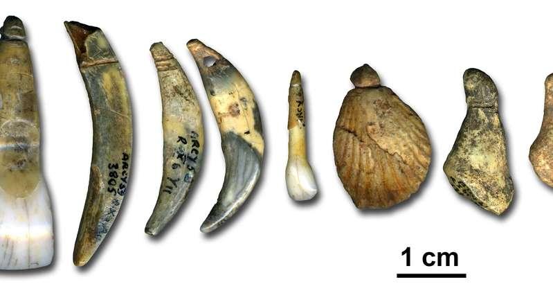Des outils et des éléments de parure trouvés dans la grotte du Renne, à Arcy-sur-Cure. La technique est celle du Câtelperronien, qui, à cet endroit, vient d'être associé à l'Homme de Néandertal. © Marian Vanhaeren, institut Max Planck