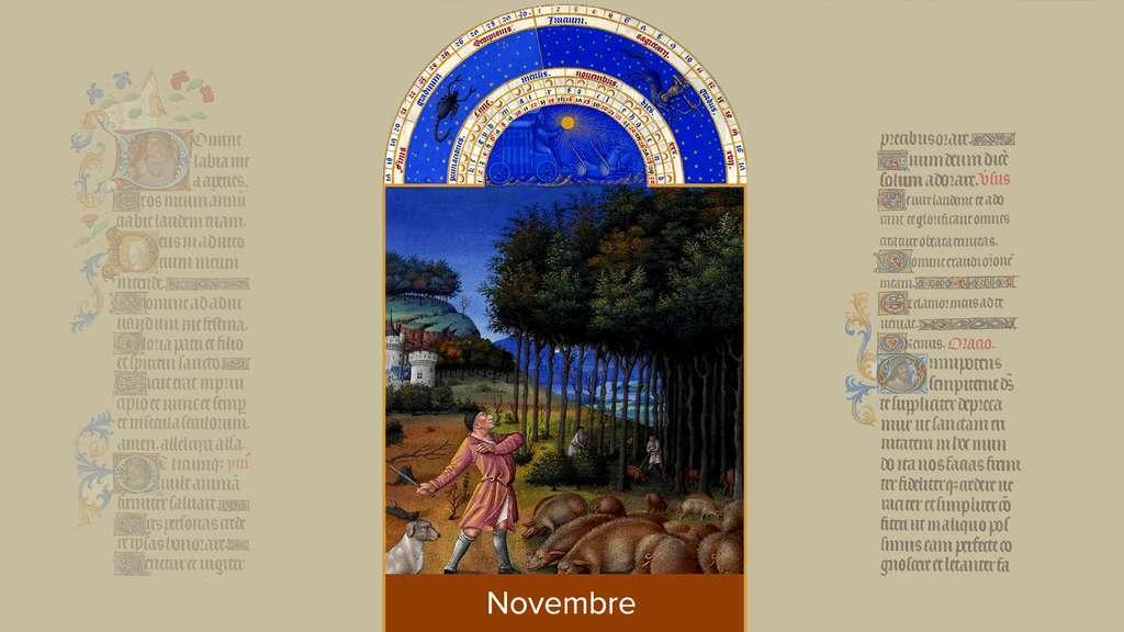 Novembre : paisson savoyarde près d'un château du duc de Berry