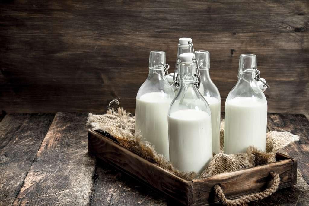 Le lait sans lactose est additionné de lactase, une enzyme qui prédigère le lactose. © Artem Shadrin, Adobe Stock