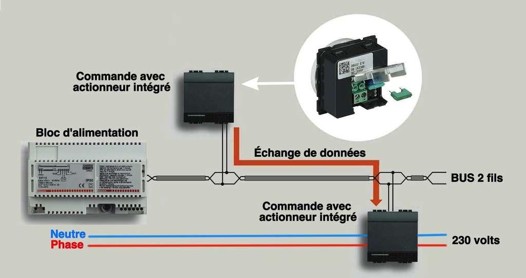 Le câblage BUS 2 fils labellisé MyHome domotique se distingue par son système de cavaliers configurateurs, identifiés par des couleurs et des codes numériques correspondant à des modes de fonctionnement différents. Il suffit d'attribuer la même configuration aux appareils pour qu'ils puissent communiquer ensemble. © BTicino